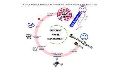 Combined Methane Energy Recovery and Toxic Dye Removal by Porous Carbon Derived from Anaerobically Modified Digestate