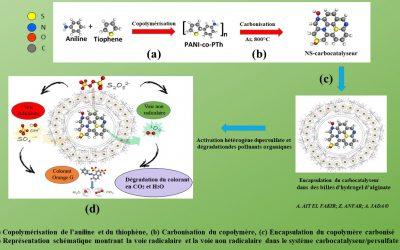 Synthèse monotope de carbocatalyseurs pour la dégradation des polluants organiques
